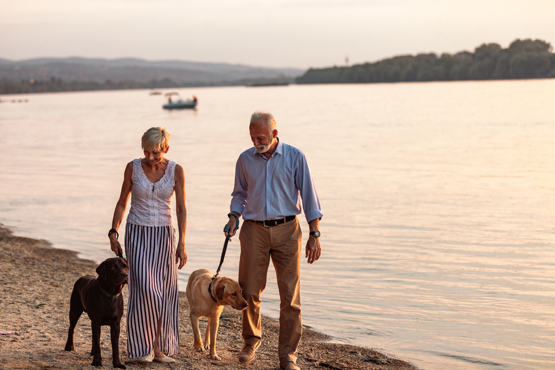 Shot of a happy senior couple walking by the river with their dogs
